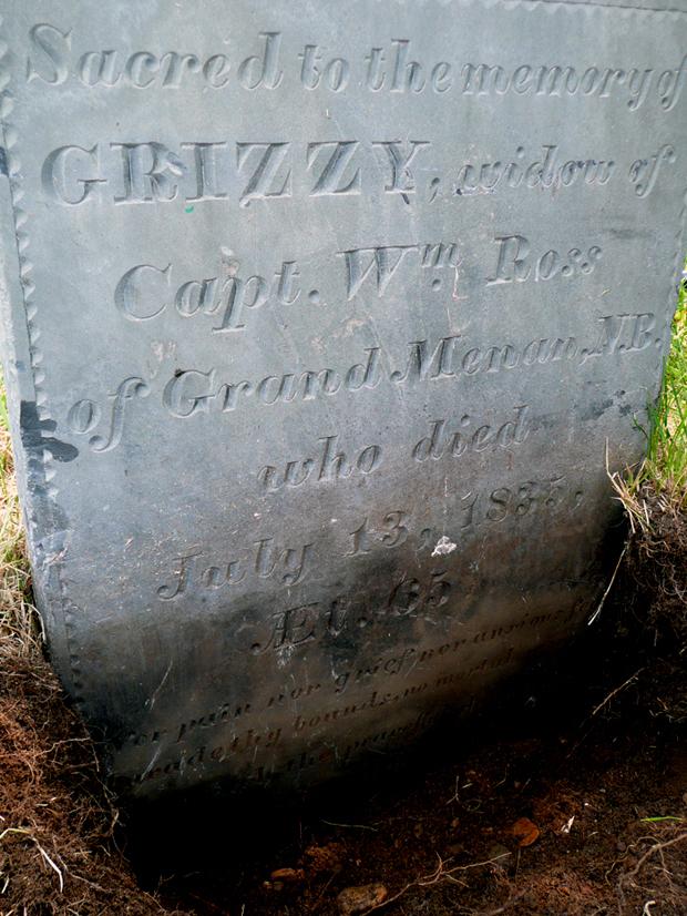 Grizzy's Stone