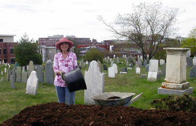 volunteers gardening in the cemetery